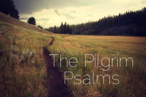 Pilgrim Psalms graphic